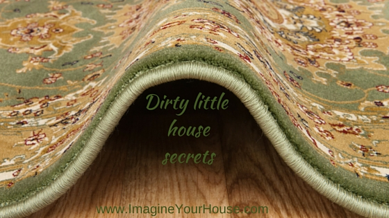 Dirty little house secrets